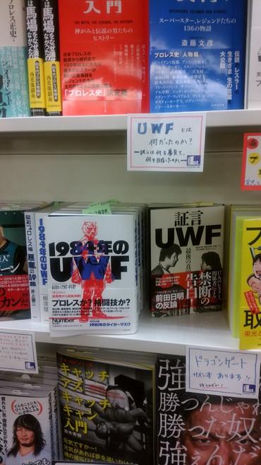 Shogen_uwf_s1