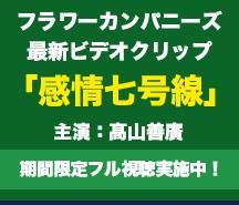 Banner_101028_2